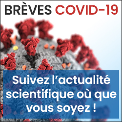 breves COVID 19