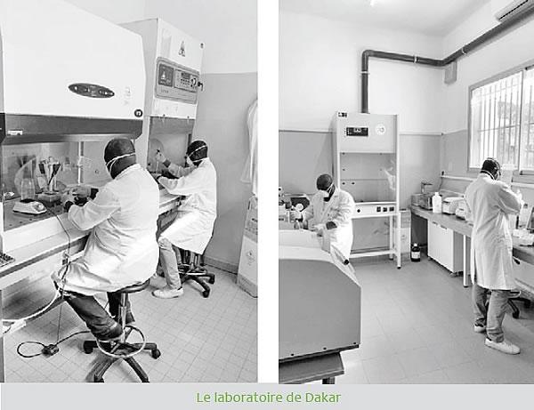 VITROME, une unité de recherche spécialisée, une collaboration France/Afrique